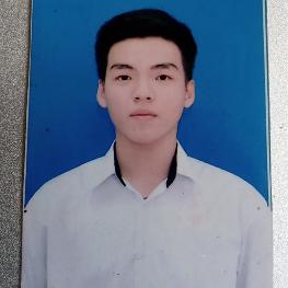 Bùi Phú Vinh
