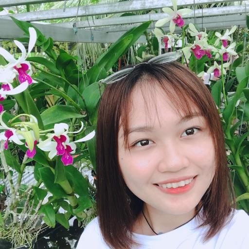 Hồ Thị Phương chi